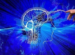 İnsan Beyni Nedir?